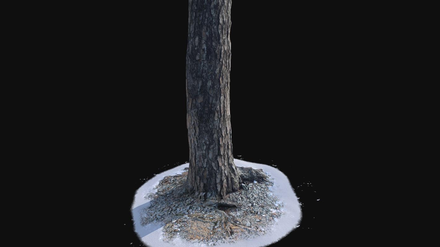 3D model snow trunk vr