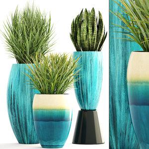 3D plants chlorophytum sansevieria