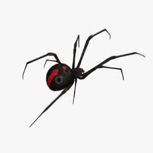 black widow rigged 3D model