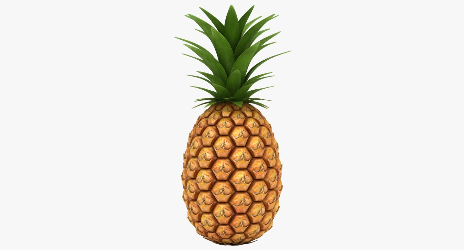 3D realistic pineapple