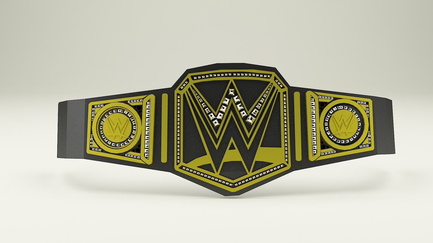 3D belt mma boxing