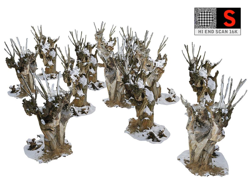 spooky winter forest 3D model