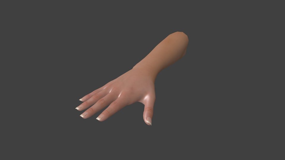 rigged woman hand model