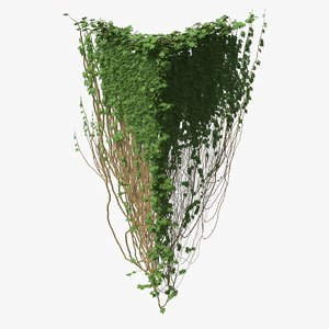 3D ivy pbr branches