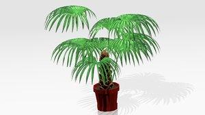 3D model decorative plant house