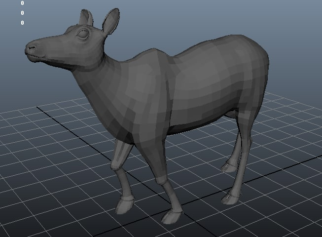 rigged animate does 3D