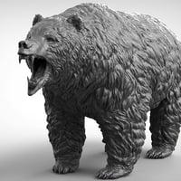 Bear Realistic
