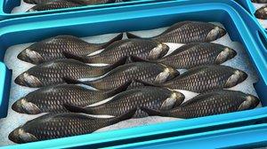 3D fish storage model