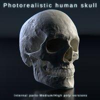 Human skull photorealistic