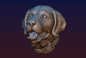3D labrador head print ready