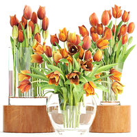 bouquet tulips set 3D