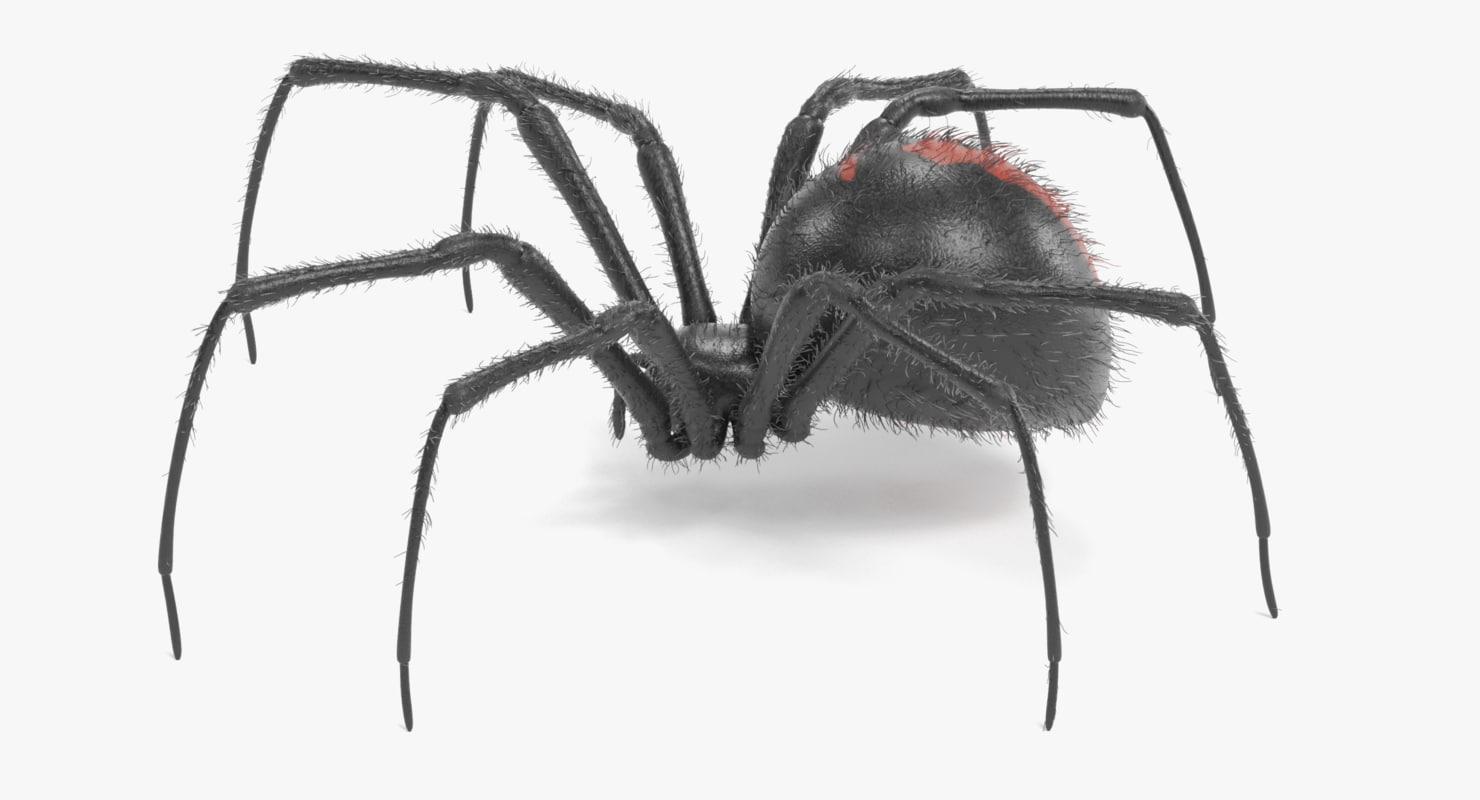 black widow fur 3D
