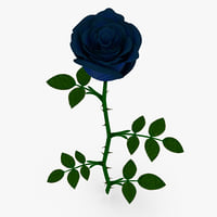 blue rose model