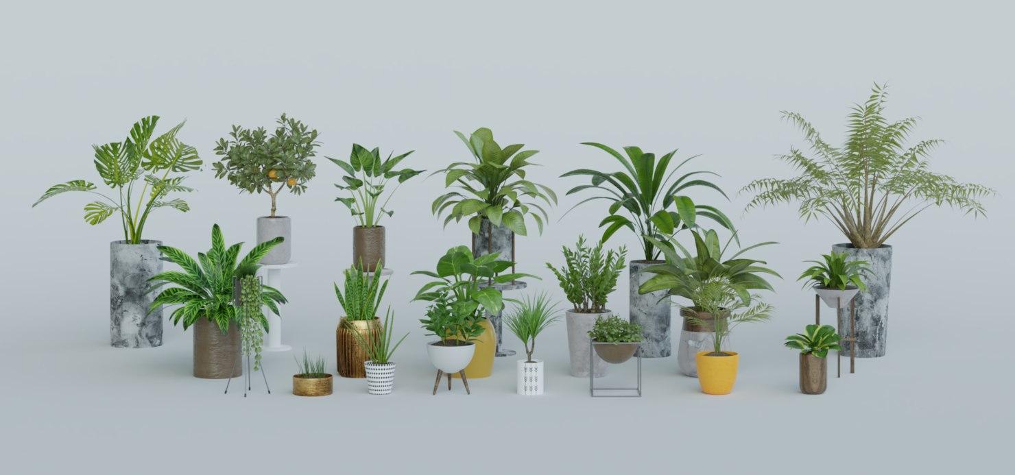 plants blender 3D model