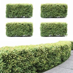 3D hedge