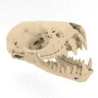 skull bat 3D model