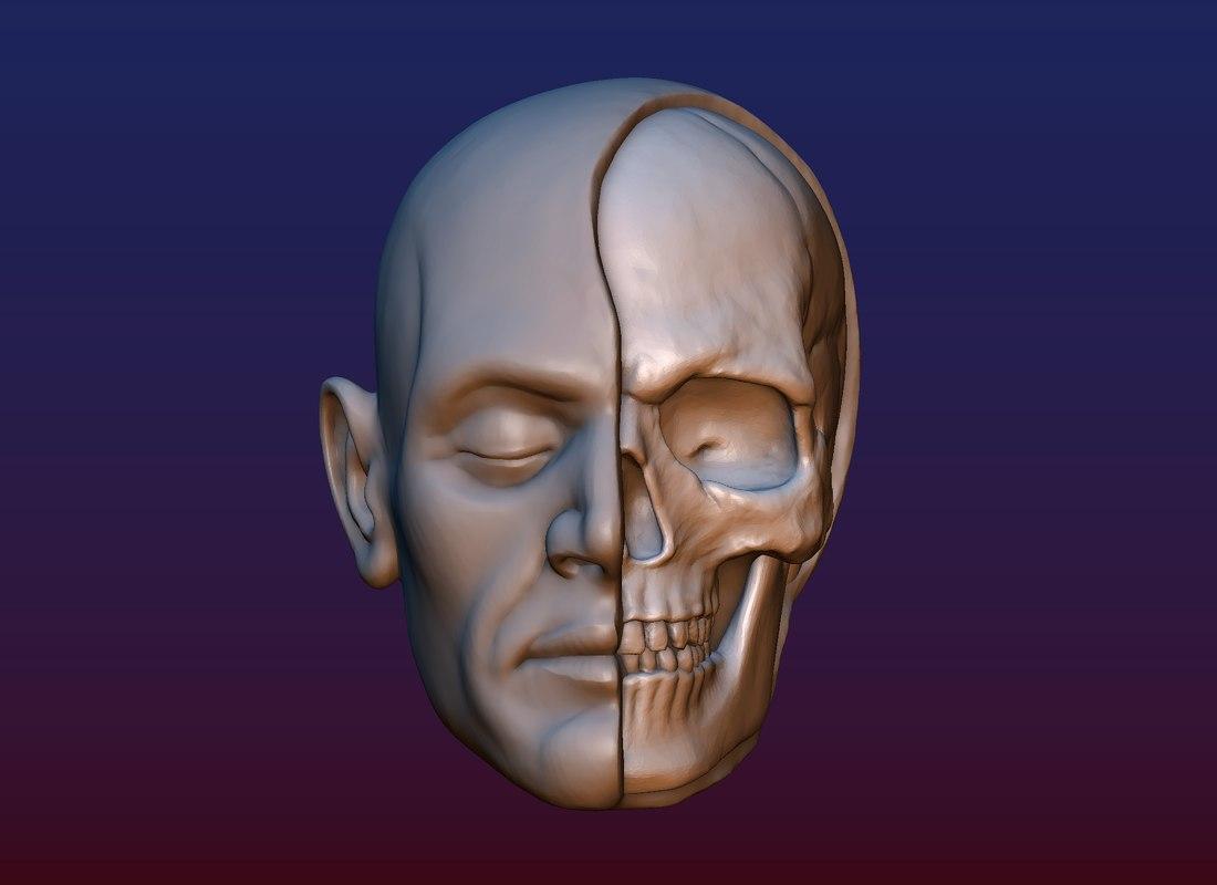 3D print head skull