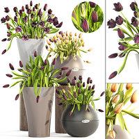 tulips pots 3D model