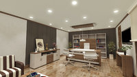 office executive room model