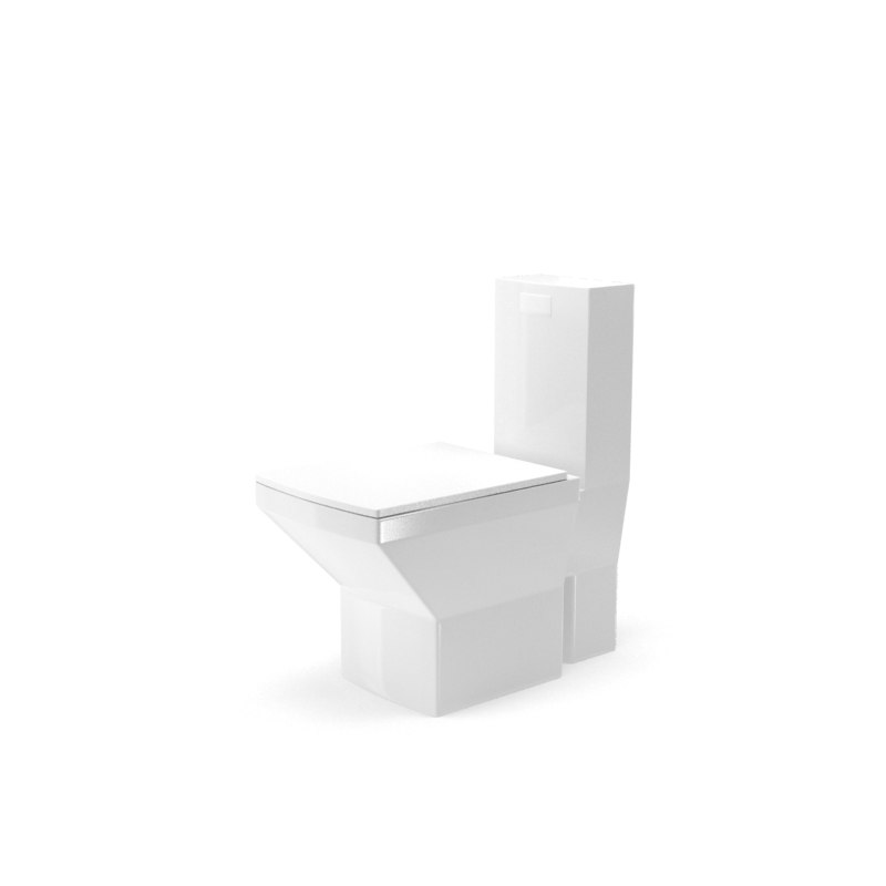 toilet bowl model