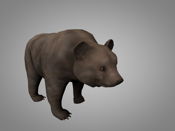 3D grizzly bear