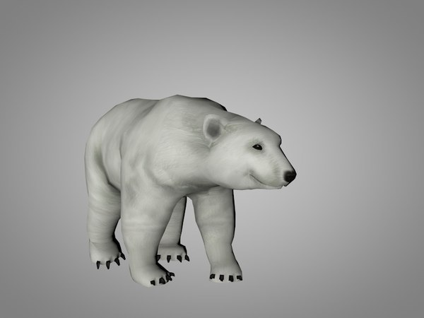 3D polar white bear model