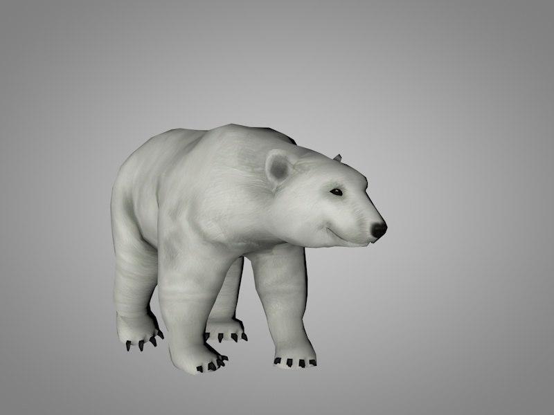 3D polar white bear model
