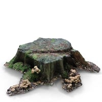 dead tree stump scan 3D model