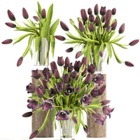 3D bouquet tulips