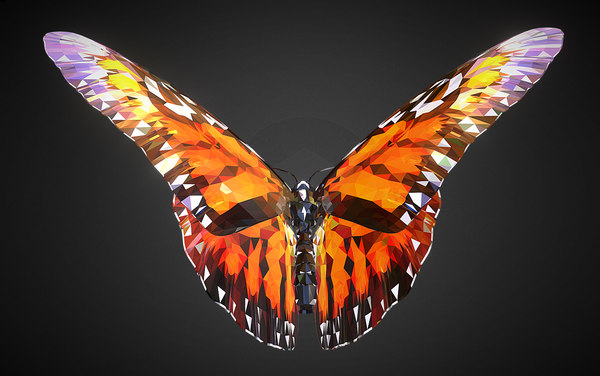 batterfly orange art insect 3D
