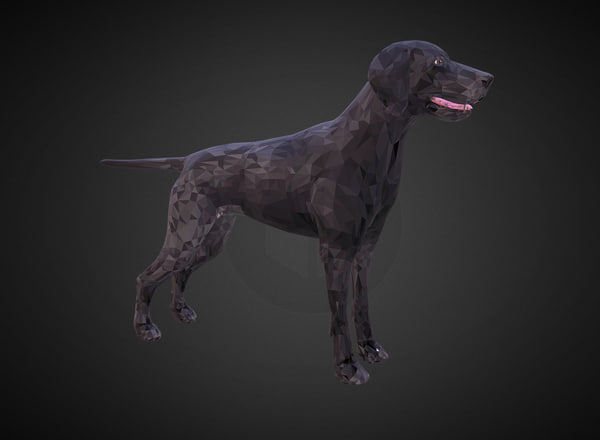 3D kurtshaar black art animal model