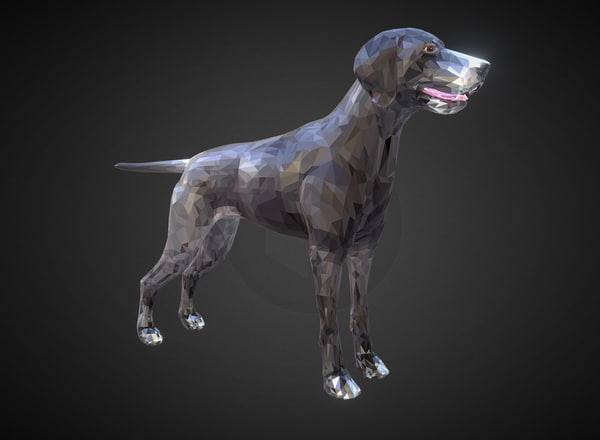 animal dog kurtshaar 3D model