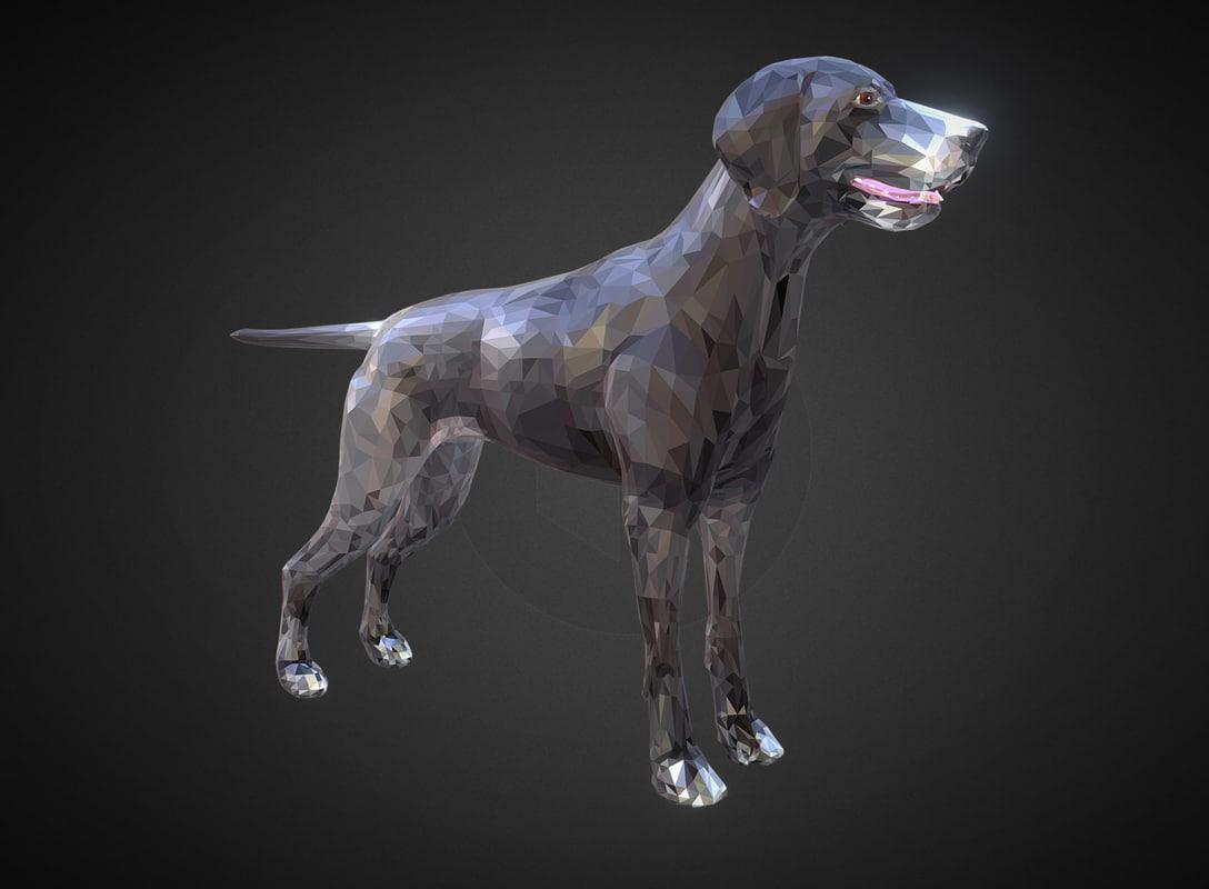 animal dog kurtshaar 3D model
