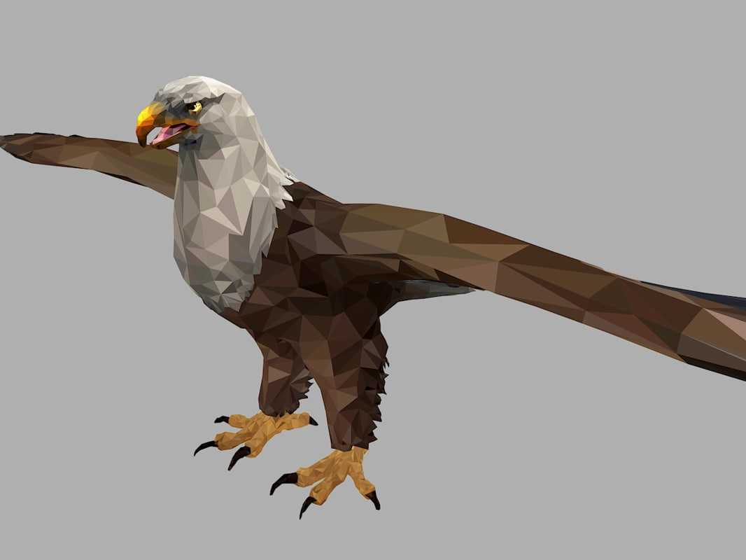 bald eagle art bird 3D model