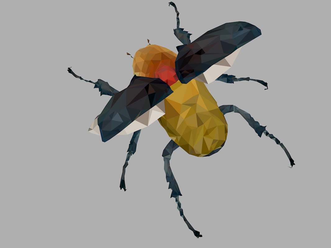 beetle insect low-poly 3D model