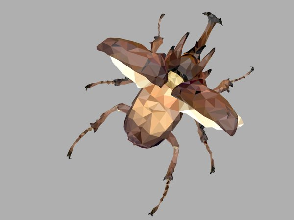 3D model beetle insect low-poly