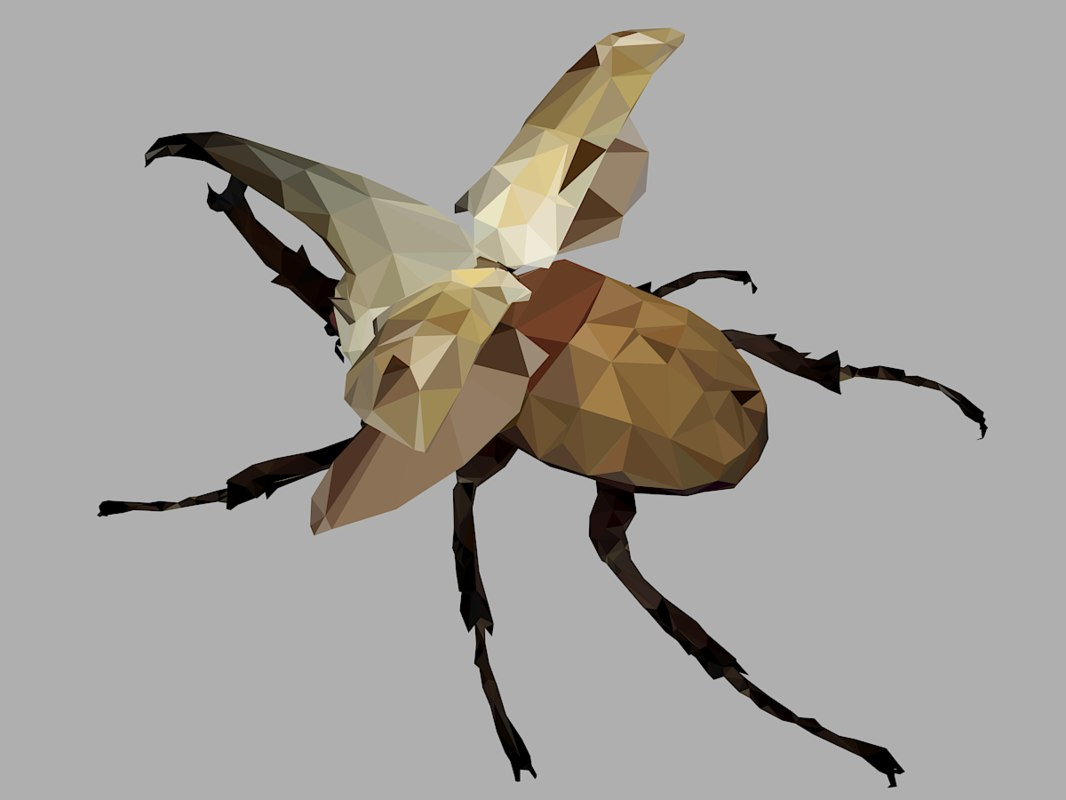 3D rhinoceros bark beetle art