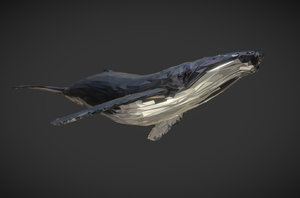 whale art animal low-poly 3D