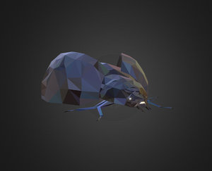 3D bug ladybug black art model
