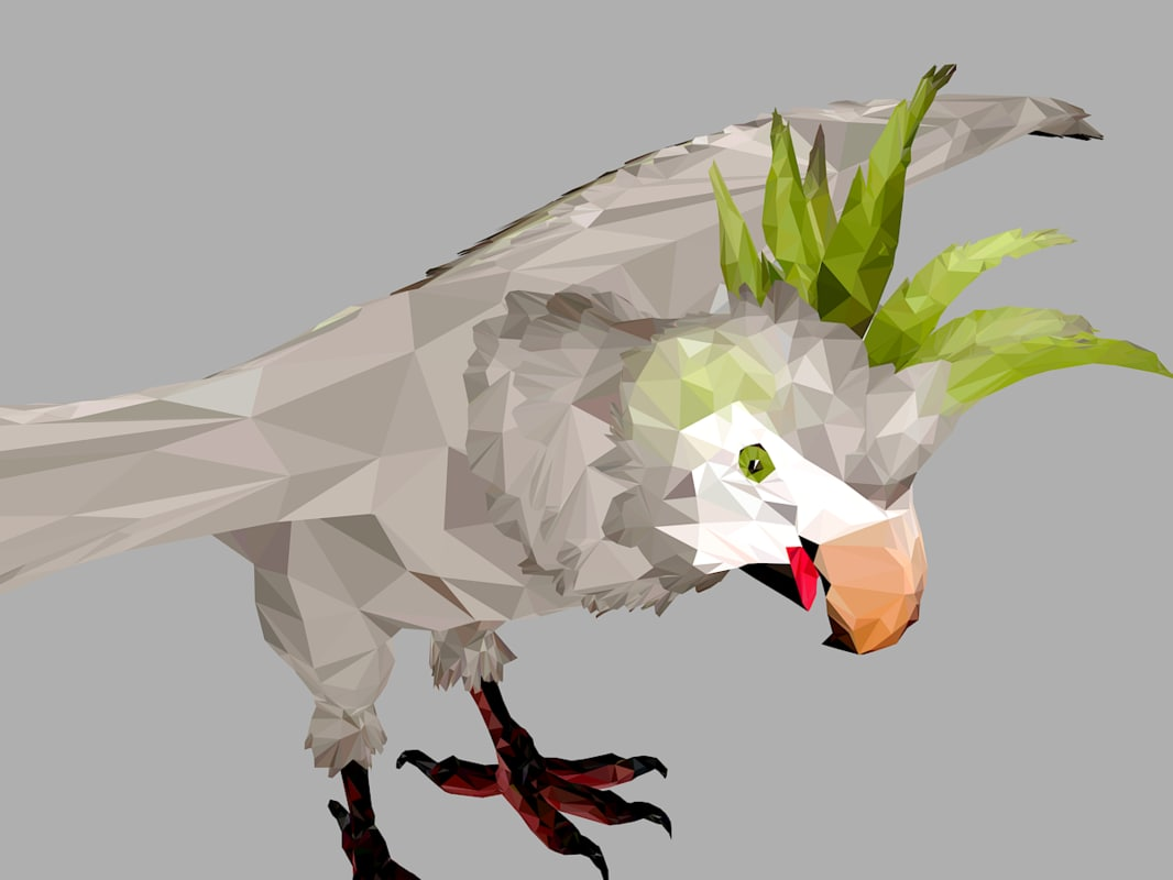 parrot art bird animal 3D