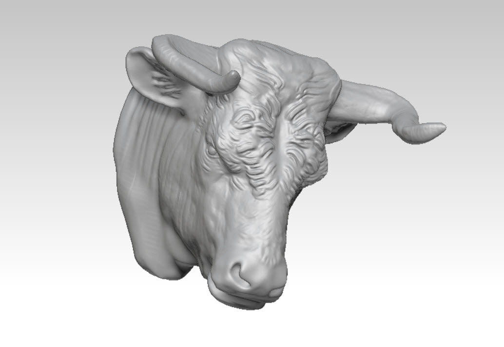 3D bullfight animals bull model