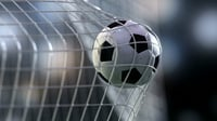 Soccer ball flying into goal net. Animated 3d scene vray.