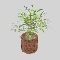green plant ceramic pot leaf 3D
