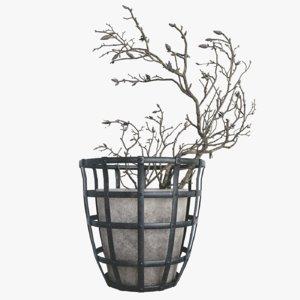 decor branch dry magnolia model