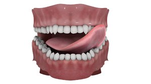 3D dentures tongue rigged model