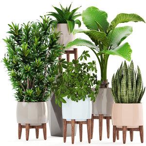 plants pot west 3D