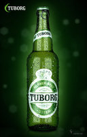 tuborg green pilsner 3D model