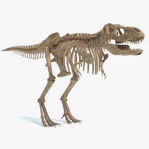 3D tyrannosaurus skeleton