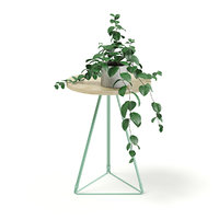 Round Table with a Plant 3D Model