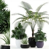 3D plants 86